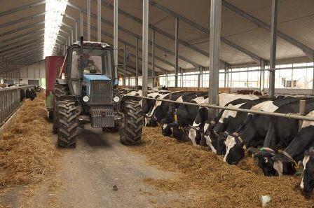 Сельскохозяйственных потребительских кооперативов в Республике Алтай стало больше
