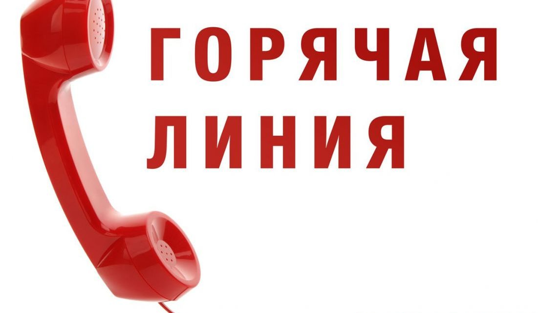 Горячая линия по вопросам взыскания алиментов состоится 31 мая