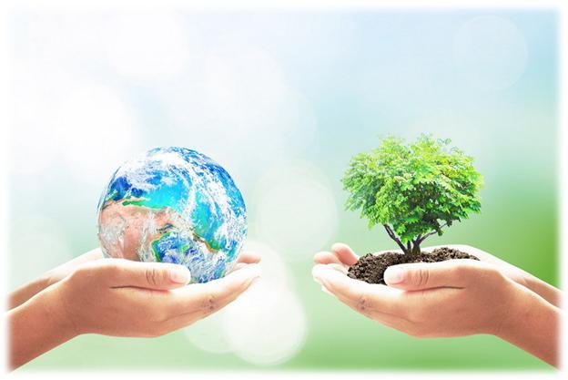 «Это должно идти от народа»: что такое экологическая осознанность и есть ли она на Алтае