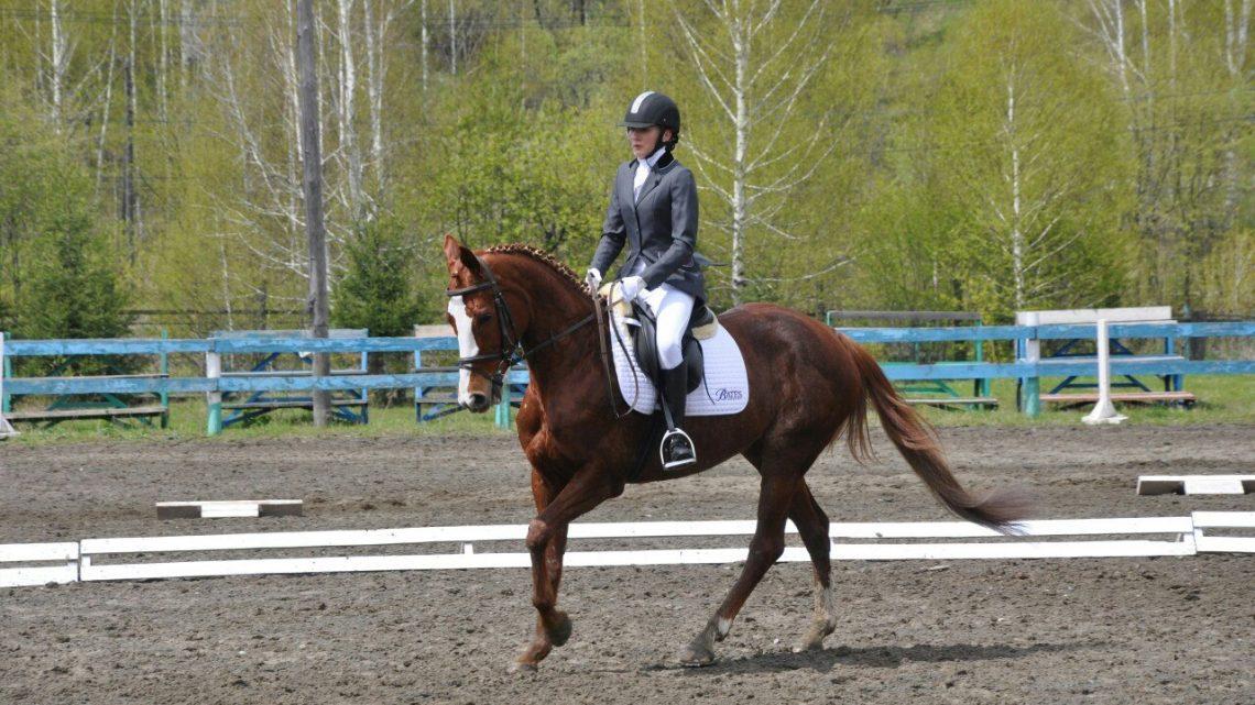 В Горно-Алтайске пройдет летний этап Чемпионата и Первенства по конному спорту