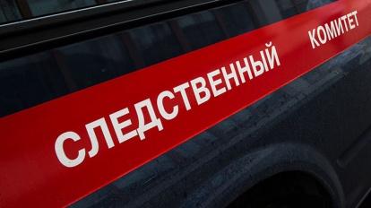 Житель Турочакского района пойдет под суд за убийство пенсионерки
