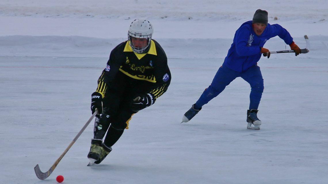 В Кош-Агаче прошел Кубок федерации по хоккею с мячом Республики Алтай на призы Сайлюгемского парка и WWF