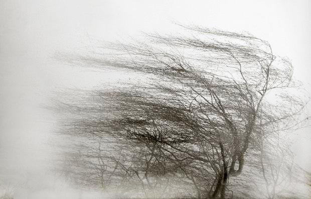 В Республике Алтай объявили штормовое предупреждение из-за надвигающегося сильного ветра