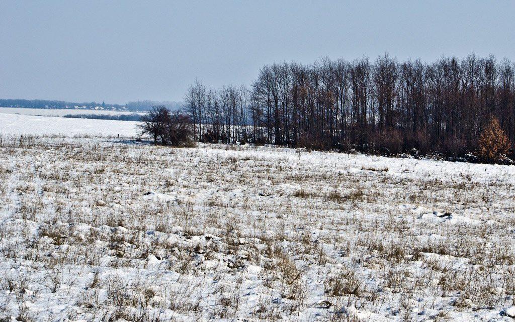 Пропавший в Усть-Коксинском районе мальчик найден мертвым