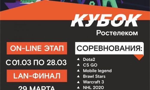 Соревнования по компьютерному спорту стартуют в первый день весны в Республике Алтай