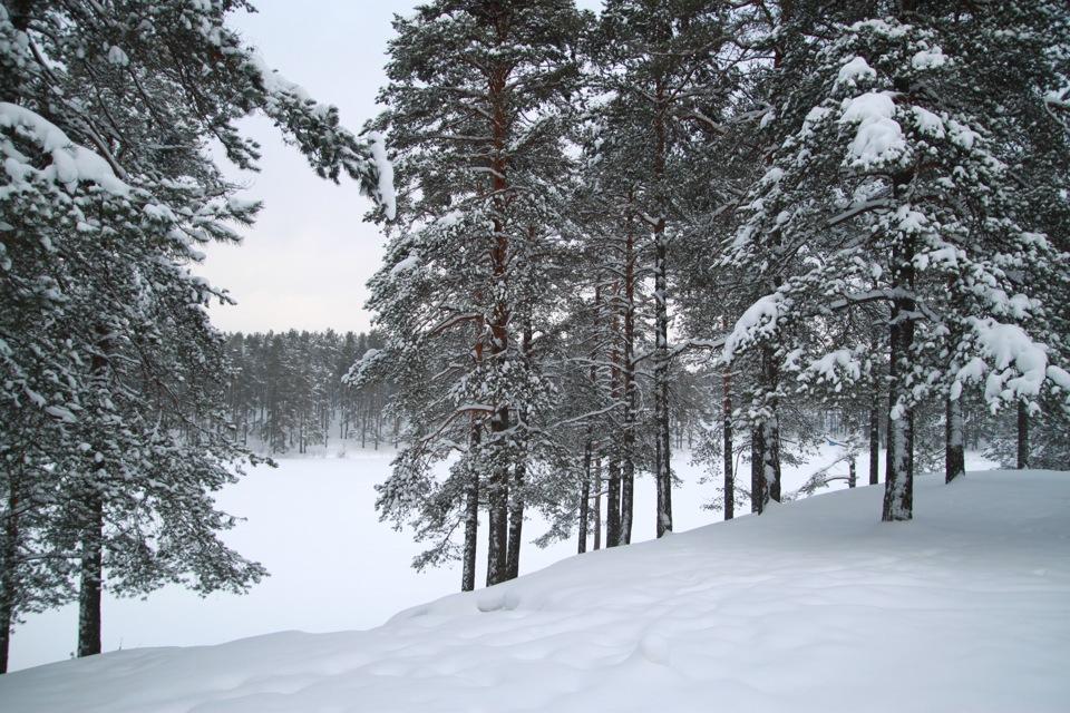 Погода в Республике Алтай на 28 февраля