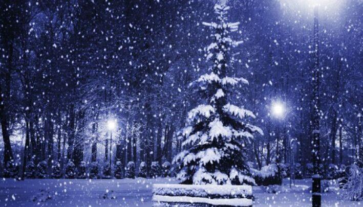 Погода в Республике Алтай на 22 февраля, субботу