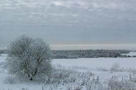Погода в Республике Алтай 16 февраля