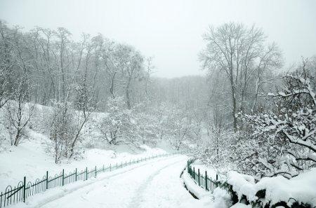 Погода 20 февраля, в четверг, в Республике Алтай