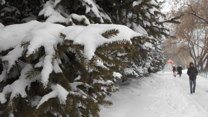Погода в Республике Алтай 19 февраля