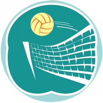 На соревнованиях по волейболу в Яконуре лидировали девушки из Шебалино, в Алтайском крае — спортсменки из Маймы