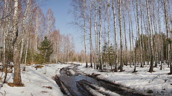 Погода в Республике Алтай 24 марта