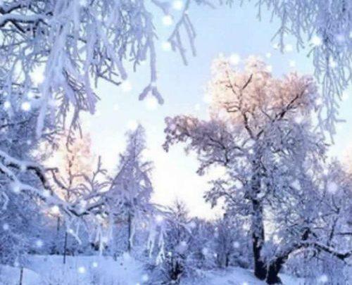 Погода в Республике Алтай 29 марта