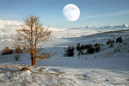 Погода в Республике Алтай 7 марта
