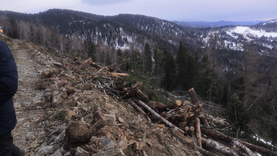 За нарушения лесного законодательства, допущенные при строительстве автомобильной дороги «Урлу-Аспак – Каракол»,  «Горно-Алтайавтодору» и его должностному лицу назначен штраф