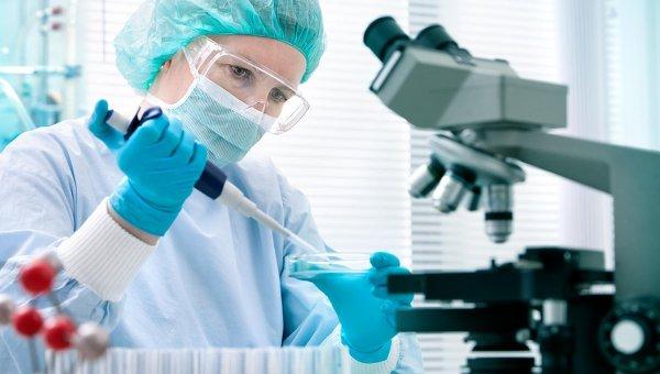 Рассылка WhatsApp о «заболевшем коронавирусом в Онгудае» не нашла лабораторного подтверждения