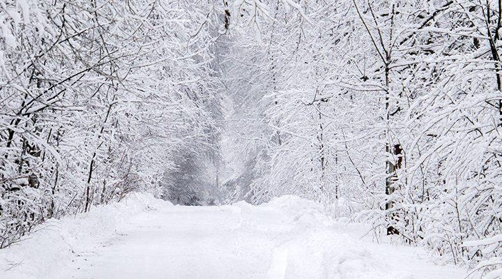 Погода в Республике Алтай 28 марта