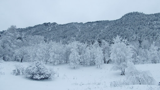 Погода в Республике Алтай 10 марта