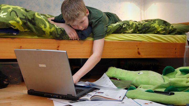 На дистанционное обучение в Республике Алтай ушли 36 тысяч школьников